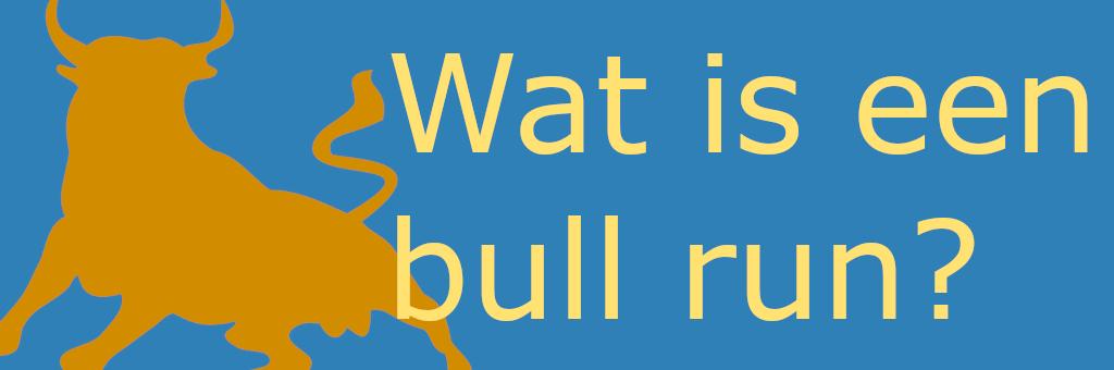 Wat is een bull run?
